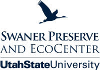 Swaner Preserve and EcoCenter