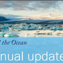 America ant the Ocean: 2011 Annual Update